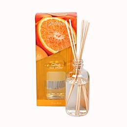 Jodhpuri™ Inc. Citrus 3 oz. Mini Aroma Diffuser