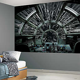 RoomMates® Star Wars™ Millennium Falcon Peel and Stick Mural