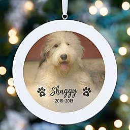 Pet Photo Memorial LED Light Ornament