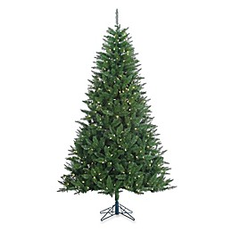 Vickerman 7-Foot 6-Inch Lincoln Fir Pre-Lit Christmas Tree with White LED Lights