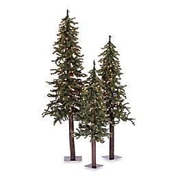 Vickerman Natural Alpine Christmas Tree Set Collection
