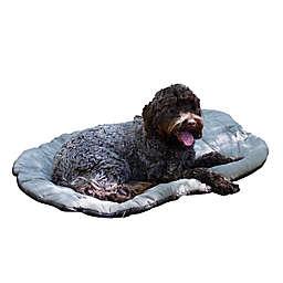 Carolina Pet Company Bed In A Bag in Olive