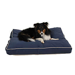 Carolina Pet Four Season Jamison Memory Foam Small Pet Bed in Blue