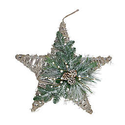 Northlight® 24-Inch Frosted Mixed Pine Hanging Star Christmas Ornament in Green