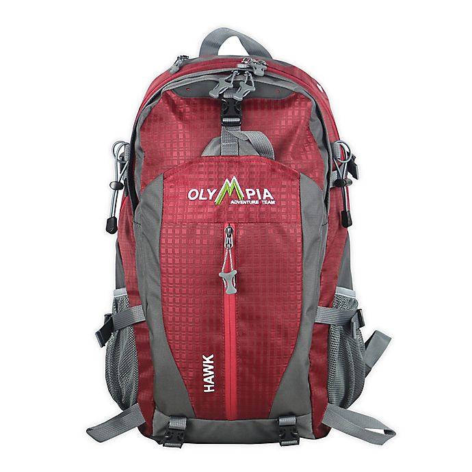 Alternate image 1 for Olympia® USA Hawk 19.5-Inch Laptop Backpack
