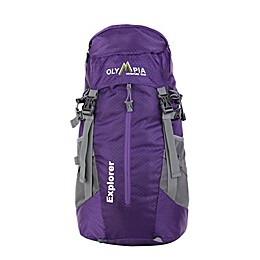 Olympia® USA Explorer 20-Inch Laptop Backpack