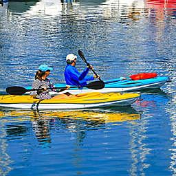 Santa Barbara Wildlife and History Kayak Tour by Spur Experiences®