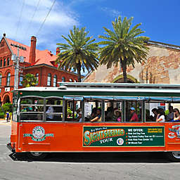 Key West Trip And Trolley Tour by Spur Experiences®