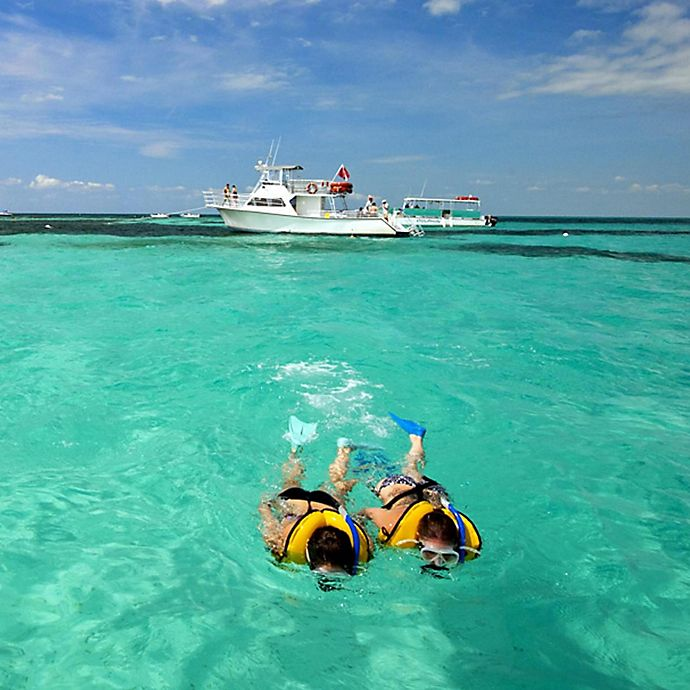 Alternate image 1 for Key West Tour And Snorkeling Trip by Spur Experiences®