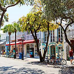 Key West Excursion by Spur Experiences®