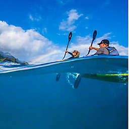 Na Pali Coast Summer Sea Kayaking Tour by Spur Experiences®