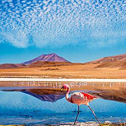 Chile: 3-Day Luxury Tour from Uyuni to San Pedro de Atacama by Spur Experiences®