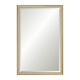 Reveal Frame & Décor Delicate Gold Leaf 17.5-Inch x 26.5-Inch Beveled Wall Mirror