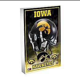 University of Iowa 3D BlocKart