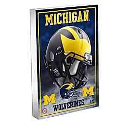 University of Michigan 3D BlocKart