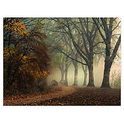 Colossal Images Last Colors of Fall Canvas Wall Art