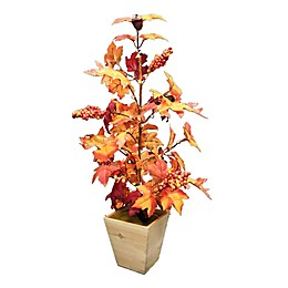 Bee & Willow™ Home Harvest 29-Inch LED Illuminated Tree with Wood Planter