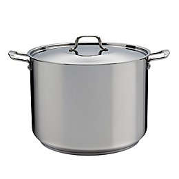 SALT® Stainless Steel Covered Stock Pot