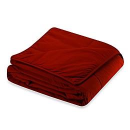 Cotton Dream All Cotton Blanket