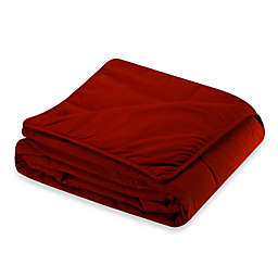 Cotton Dream All Cotton Full/Queen Blanket in Scarlet