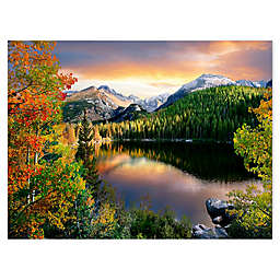 Colossal Images  Aspen Trees and Sagebrush Canvas Wall Art