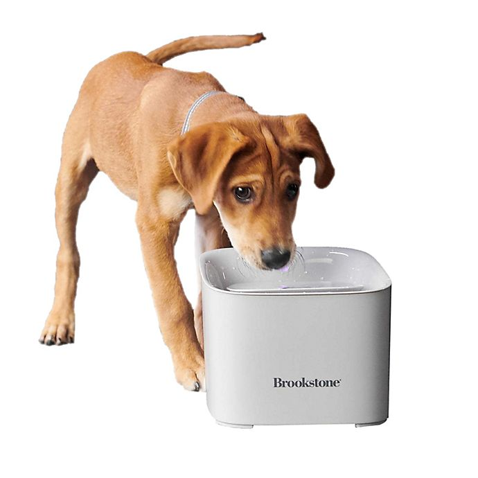 Alternate image 1 for Brookstone® Pet Water Fountain in Natural