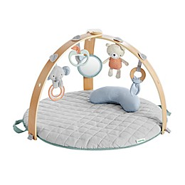 Ingenuity™ Cozy Spot Loamy Reversible Activity Gym in Tan