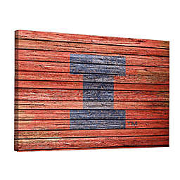 University of Illinois Weathered 36-Inch x 48-Inch Canvas Wall Art