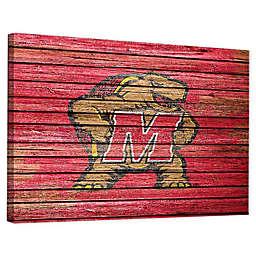 University of Maryland Weathered Canvas Wall Art