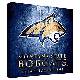 Montana State University Framed Canvas Museum Design Wall Art