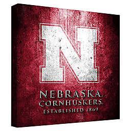 University of Nebraska Framed Canvas Museum Design Wall Art