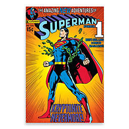 """Superman """"Breaking Chains"""" Wall Décor Plaque"""