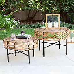 Southern Enterprises Mandria 2-Piece Wicker Round Outdoor Table Set