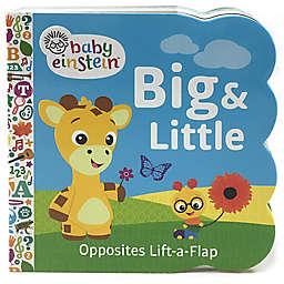"""Cottage Door Press Baby Einstein™ """"Big & Little"""" Book by Scarlett Wing"""