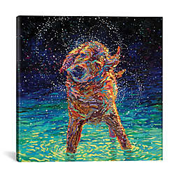 iCanvas Iris Scott Moonlight Swim Canvas Wall Art