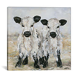 iCanvas Debi Coules Freckles and Speckles Canvas Wall Art