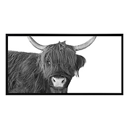 Scottish Highland Cow 25.57-Inch x 49.57-Inch Framed Print Wall Art in Black/White