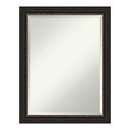 Amanti Art Accent Bathroom Vanity Mirror in Bronze