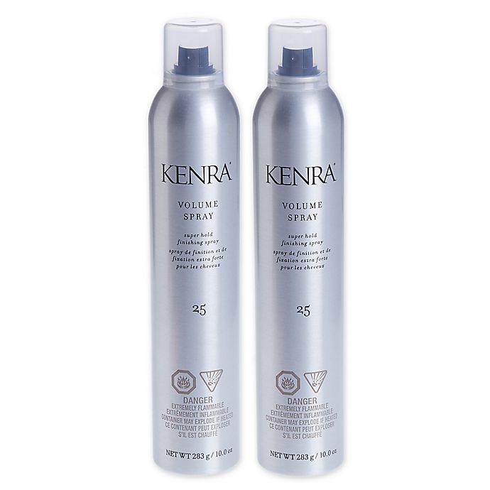 Alternate image 1 for Kenra® 10 oz. Volume Spray #25 (Set of 2)
