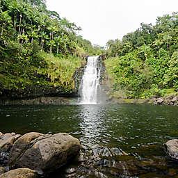 Hilo Tropical Waterfalls Adventure Tour by Spur Experiences®