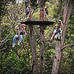 Kohala Zipline Adventure by Spur Experiences® (Big Island, Hawaii)