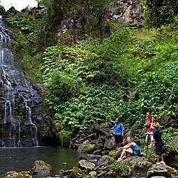 Hawaii Big Island Waterfall Adventure by Spur Experiences®