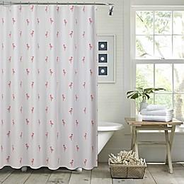 Pereira da Cunha Flamingo Shower Curtain