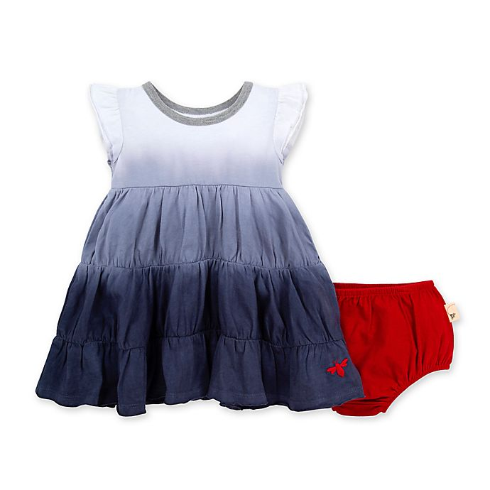 Alternate image 1 for Burt's Bees Baby® Dip Dyed Organic Cotton Dress with Diaper Cover in Smoke Blue
