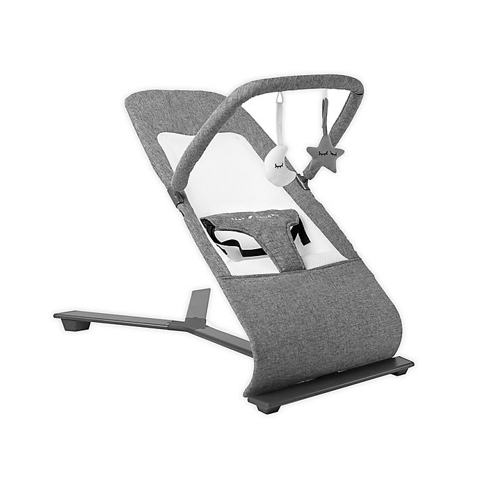 Alternate image 1 for Baby Delight® Go with Me Alpine Deluxe Portable Baby Bouncer in Charcoal
