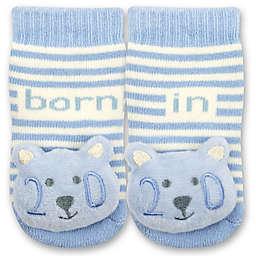 IQ Kids Size 0-6M 2020 Bear Rattle Socks in Blue