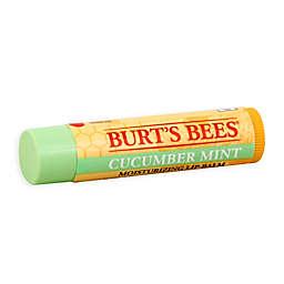Burt's Bees® .15 oz. 100% Natural Moisturizing Lip Balm in Cucumber Mint