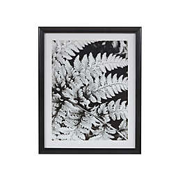Martha Stewart Ostrich Fern I Framed 17.5-Inch x 21.5-Inch Wall Art with Single Mat in Black/White