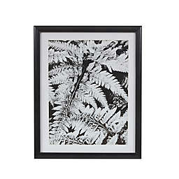 Martha Stewart Ostrich Fern II Framed 17.5-Inch x 21.5-Inch Wall Art with Single Mat in Black/White