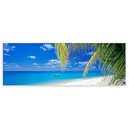 Colossal Images    Boat Swim Canvas Wall Art